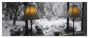Our Winter Wonderland-the view out our living room window